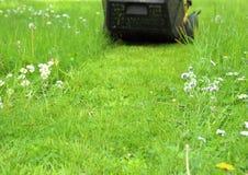 След травокосилки в саде Стоковое Изображение RF