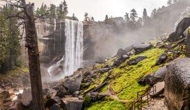 След тумана в национальном парке Yosemite Стоковые Изображения RF