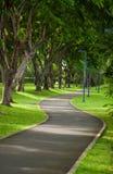 следуя за сад footpath расквартировывает длинний камень Стоковое Фото
