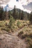 След через поле лавы Стоковое Изображение RF
