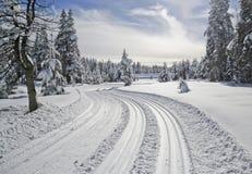 След лыжи Стоковое Фото