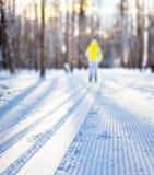 След лыжи Стоковая Фотография RF