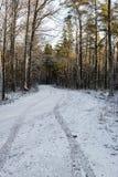 Следы автошины автомобиля на дороге зимы Стоковая Фотография