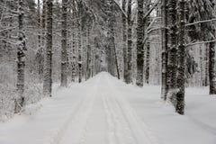 Следы автошины автомобиля на дороге зимы Стоковые Фото