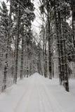 Следы автошины автомобиля на дороге зимы Стоковые Изображения RF