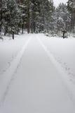 Следы автошины автомобиля на дороге зимы Стоковое фото RF
