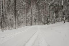 Следы автошины автомобиля на дороге зимы Стоковое Фото