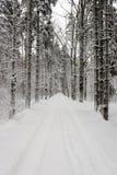 Следы автошины автомобиля на дороге зимы Стоковые Фотографии RF