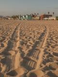 Следы автошины на пляже Венеции Стоковая Фотография