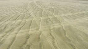 Следы автошины против Следы океана Стоковое Фото