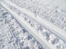 Следы беговых лыж Стоковое Фото