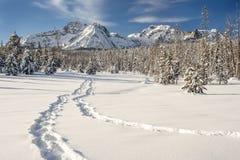 Следы ботинка снега водят к горам зимы Стоковая Фотография
