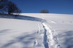 Следы ботинка Snowy Стоковое Изображение
