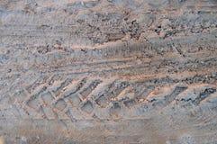 Следы колеса в грязи Стоковые Изображения RF