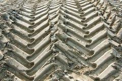 Следы колеса трактора в песке Стоковое Фото