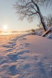 Следы на снежке Стоковая Фотография RF