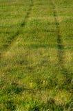 Следы на луге на холме Стоковое Фото