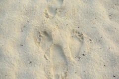 Следы ноги в песке Стоковая Фотография