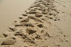 Следы ноги мотоцикла в песке Стоковое фото RF
