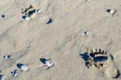 Следы ноги на горячем песке Стоковое Изображение RF