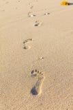 Следы ноги на песке, острове Boracay, Филиппинах Стоковая Фотография RF