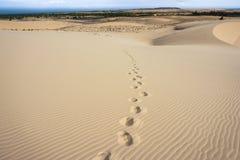 Следы ноги на песчанной дюне Стоковое фото RF