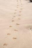 следы ноги песочные стоковое изображение rf