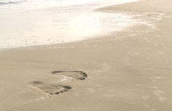 следы ноги пляжа стоковое фото