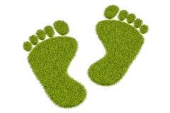 Следы ноги травы человеческие, перевод 3D иллюстрация вектора
