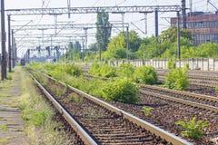 Следы поезда в депо Стоковые Изображения RF