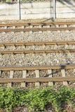 Следы поезда в депо Стоковые Изображения