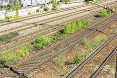 Следы поезда в депо Стоковые Фото