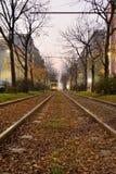 Следы трамвая стоковые фотографии rf