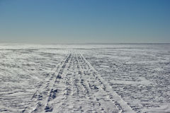 Следы snowmobile Стоковое Фото