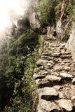 След Inca Стоковое фото RF
