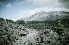 След Mt St Helens Стоковые Фотографии RF