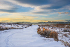 След Snowy на заходе солнца стоковое изображение rf