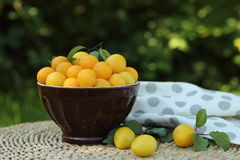 Слива вишни в шаре на таблице в саде Стоковое Изображение