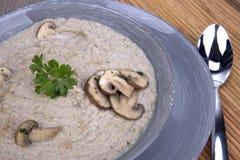 Сливк гриба Champignon Стоковая Фотография RF
