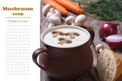 Сливк супа гриба в баке Стоковое фото RF