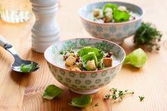 Сливк brussel - супа ростка Стоковое Изображение RF