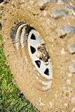 С колеса и автошины дороги вполне грязи Стоковая Фотография RF