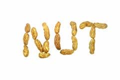Слово арахиса на белой предпосылке Стоковое Изображение RF