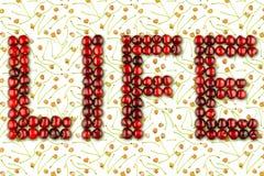 Слово вишен ягод - жизнь стоковые изображения rf