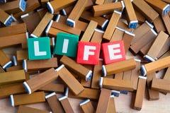 Слово жизни внутри красочного текстового поля на коричневом деревянном stamper Стоковые Фотографии RF