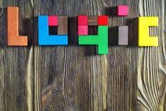 Слово на логике пестротканых деревянных блоков Стоковое Изображение RF