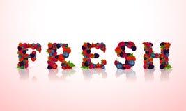 Слово ягод свежее Стоковое фото RF