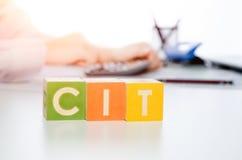 Слово CIT с красочными блоками стоковое изображение rf