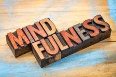 Слово Mindfulness в деревянном типе Стоковые Фото