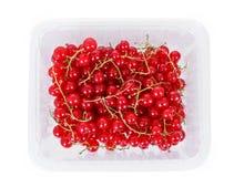 Сложите ягоды красной смородины на белой предпосылке стоковое изображение